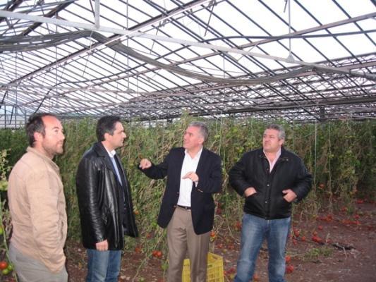 Σε θερμοκήπιο παραγωγής κηπευτικών  20-02-2011